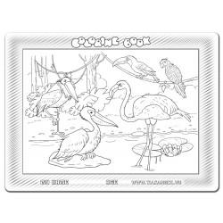 030-133 Cái cò, cái vạc, cái nông