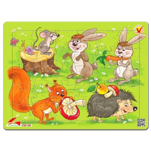 030-141 Chuột , thỏ, sóc và nhím