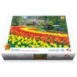 925-049  Hoa Tulip